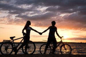 Bike Rentals/tours